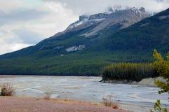 De rivier van de gletsjer Stock Afbeelding