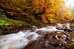 De Rivier van de herfst Stock Foto's