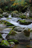 De rivier van de herfst Royalty-vrije Stock Foto's