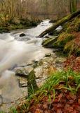 De rivier van de herfst in Schotland stock afbeelding