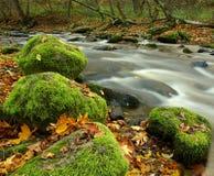 De Rivier van de herfst in September Stock Afbeelding