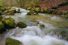 De rivier van de lente Stock Foto