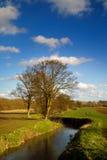 De rivier van de lente Stock Afbeeldingen