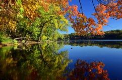 De rivier van de Mississippi. Royalty-vrije Stock Foto