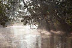 De rivier van de mist Royalty-vrije Stock Afbeeldingen