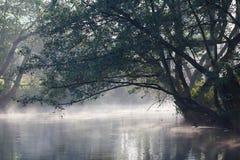 De rivier van de mist Stock Foto