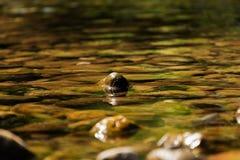 De rivier van de oppervlakteberg Stock Foto's