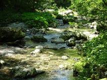 De rivier van de Socavallei, Slovenië stock afbeelding