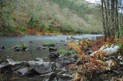 De rivier van de vallei stock afbeelding