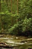 De Rivier van de wildernis royalty-vrije stock afbeelding
