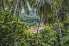 De rivier van de wildernis Royalty-vrije Stock Foto