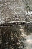 De rivier van de winter stock foto