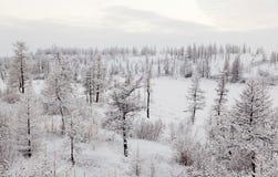 De rivier van de winter Royalty-vrije Stock Afbeelding