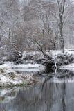 De rivier van de winter Royalty-vrije Stock Foto
