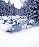 De rivier van de winter en sneeuwgrens Royalty-vrije Stock Fotografie