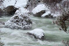 De Rivier van de winter (landschap) Stock Afbeeldingen