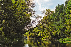 De rivier van de zomer Royalty-vrije Stock Foto