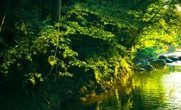 De rivier van de zonsondergang royalty-vrije stock afbeelding