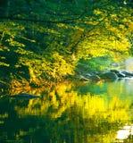 De rivier van de zonsondergang royalty-vrije stock afbeeldingen