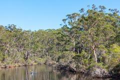 De Rivier van Denemarken in Australië Stock Foto