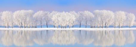 De rivier van Donau in wintertijd Stock Afbeelding