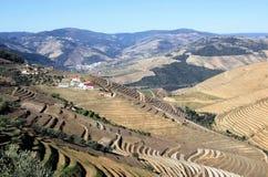 De rivier van Douro Stock Fotografie