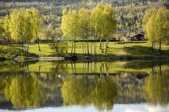 De rivier van Drammen stock afbeeldingen