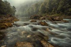 De rivier van Drina Stock Afbeeldingen