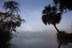 De rivier van Florida op een nevelige ochtend royalty-vrije stock afbeelding