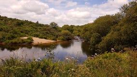De Rivier van het het westenpijltje Het Nationale Park van Dartmoor Devon het UK Stock Afbeelding