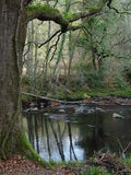 De rivier van het Pijltje royalty-vrije stock foto's