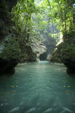 De rivier van Jamaïca Royalty-vrije Stock Fotografie
