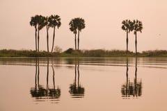De rivier van Kafuie Royalty-vrije Stock Foto's