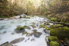 De rivier van Kamniškabistrica van bergen Royalty-vrije Stock Fotografie