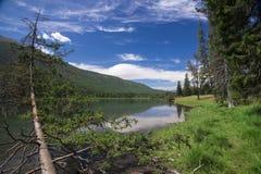 De rivier van Kanas Stock Fotografie