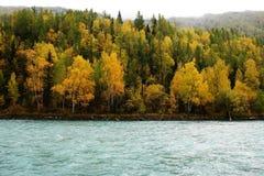 De rivier van Kanas Stock Afbeeldingen