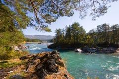De rivier van Katun stock fotografie