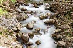 De rivier van Martinique - van Alma in Saint Joseph royalty-vrije stock foto's