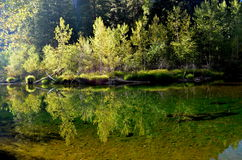 De Rivier van Merced in Yosemite stock afbeelding