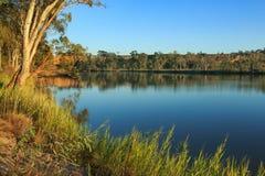 De rivier van Murray Het getijde was binnen op die dag Royalty-vrije Stock Foto