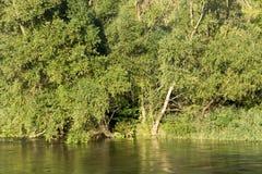De rivier van Nestos in Griekenland stock afbeeldingen