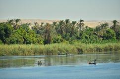 De rivier van Nijl stock foto's