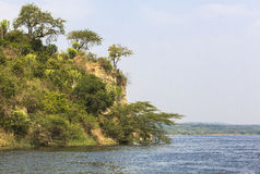 De rivier van Nijl in Murchison valt Nationaal Park, Oeganda stock afbeeldingen