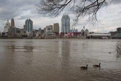 De Rivier van Ohio boven vloedstadium in Cincinnati van de binnenstad royalty-vrije stock afbeelding