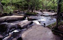 De rivier van Peshtigo Royalty-vrije Stock Afbeeldingen