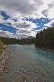 De Rivier van Pipestone dichtbij Meer Louise - Banff Stock Fotografie