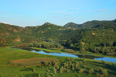 De rivier van Rijeka Crnojevica dichtbij Skadar-Meer Stock Foto