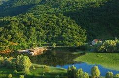 De rivier van Rijeka Crnojevica dichtbij Skadar-Meer Stock Afbeeldingen