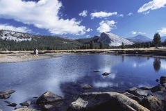 De Rivier van Tuolumne in Yosemite Royalty-vrije Stock Foto