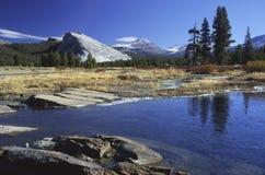 De Rivier van Tuolumne in Yosemite Stock Afbeelding